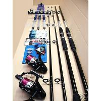 Beach fishing kit 2 rods reels tripod and tackle